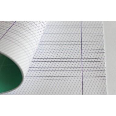 Тетрадь для чистописания 12л в частую косую линию - комплект 20шт